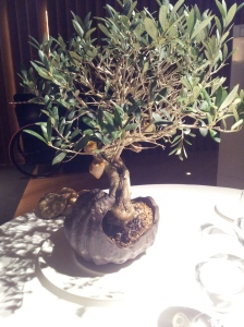 ECCR Appetizer  (2) Olive Tree