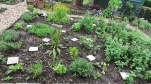 Vous le vous herb_vegetable garden