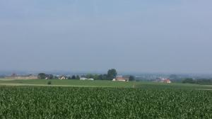 Pajottenland landscape (3)
