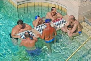 Széchenyi men playing chess