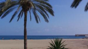 Malaga 3