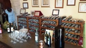 Fat fib vineyard 27