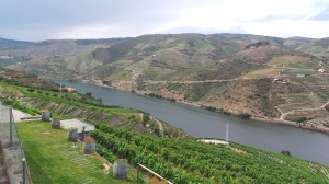 Quinta do Popa view 3