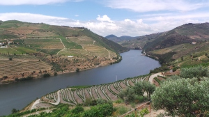 Quinta do Popa view 4