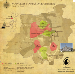 Vineyard map by Filipa Pato