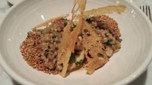 Barley risotto with porcini