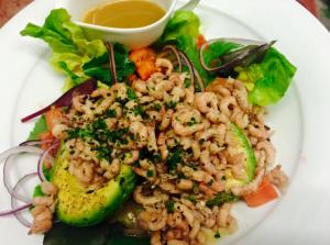 grey shrimp avocado salad